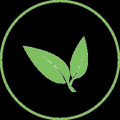 Grünes Blatt als Icon für die Nachhaltigkeit
