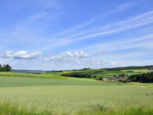 IMMOVI Landschaft bei Nabburg